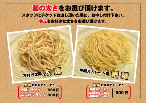 noodle_type